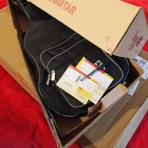 Gitarre in einem Karton