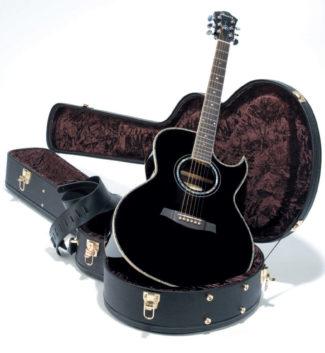 Akustik-Gitarre mit Cutaway von Ibanez, im Koffer liegend