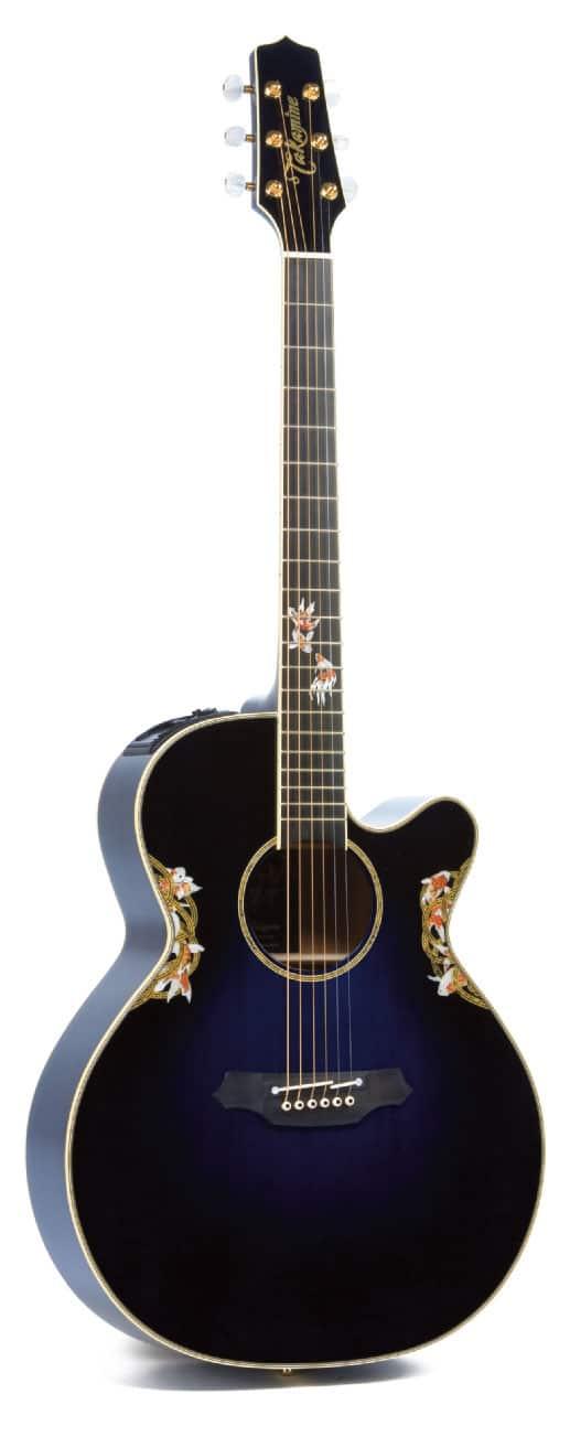 Akustikgitarre von Takamine, leicht gemustert, stehend