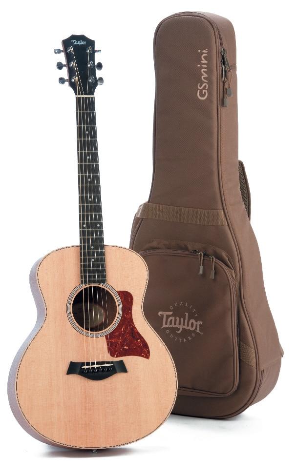Akustik-Gitarre von Taylor mit Tasche, stehend