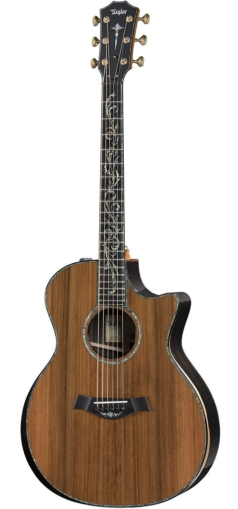 Taylor-PS14ce-2