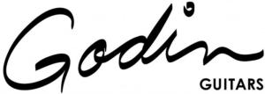 Godein Logo