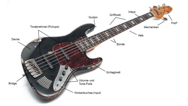 Schaubild Bass: Alle Teile erklärt