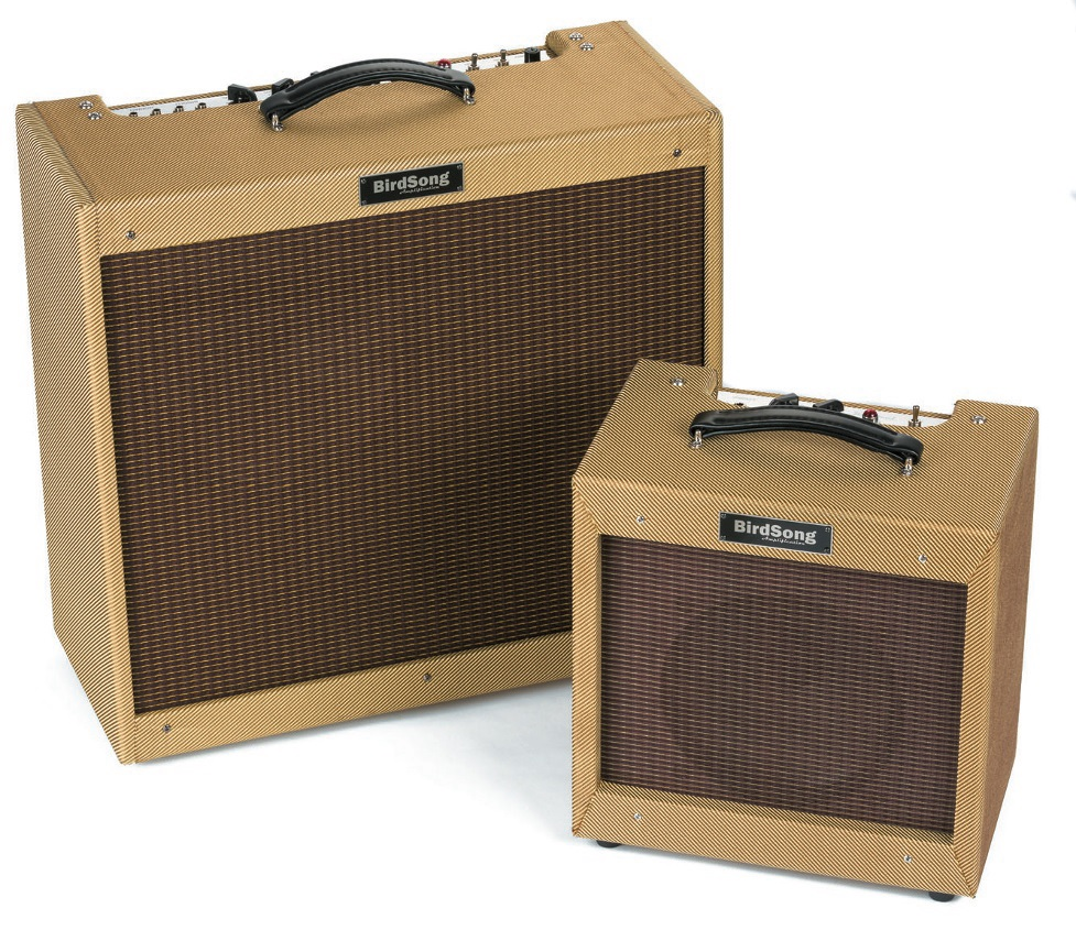 BirdSong Amplification Kestrel Falcon