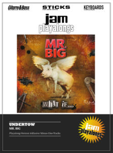Produkt: Undertow – Mr. Big