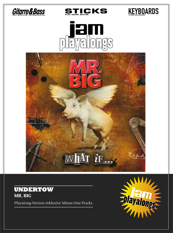 Produkt: Undertow – Mr. Big